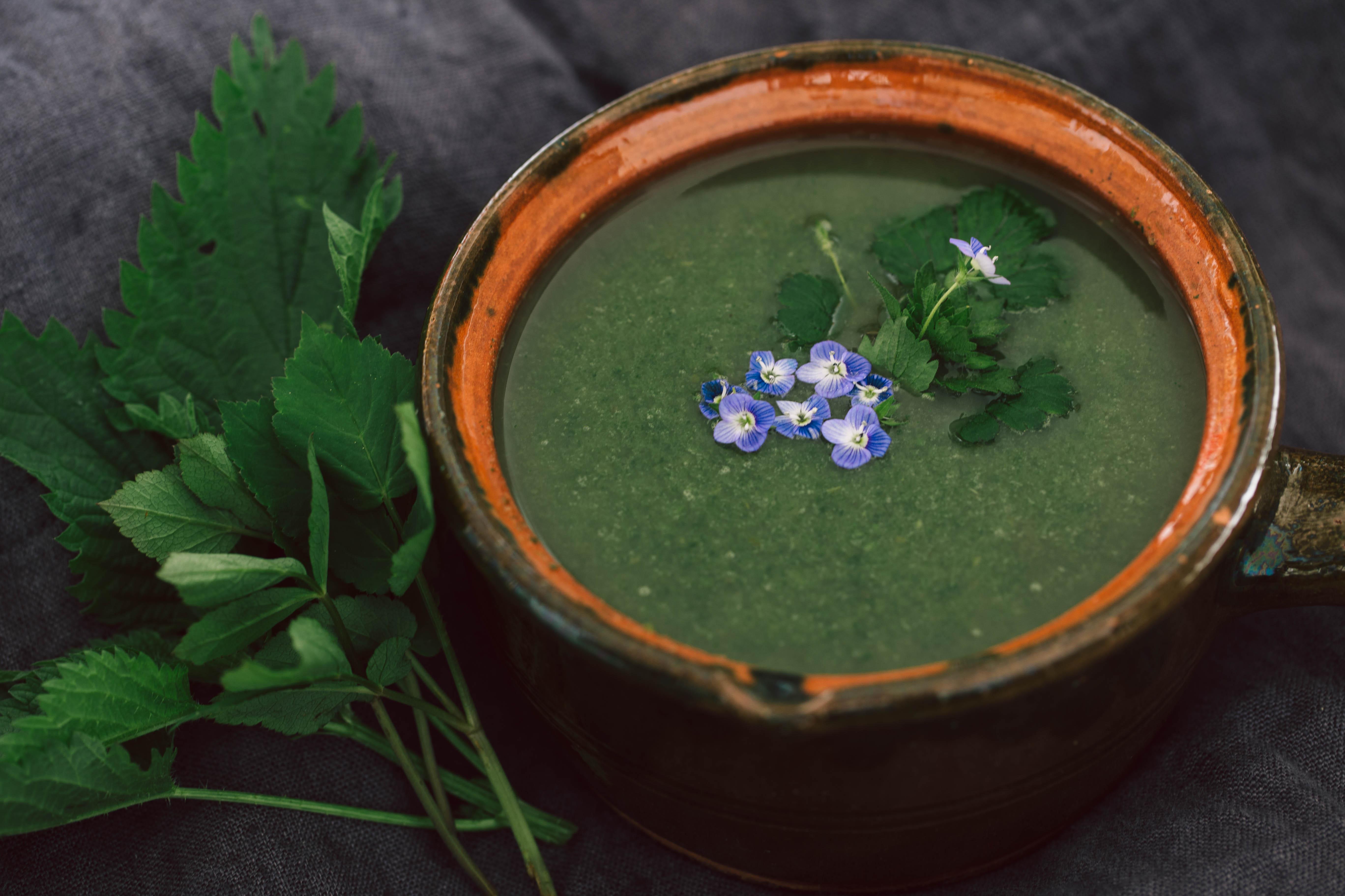 Neunkräutersuppe Gründonnerstagssuppe einfaches Rezept